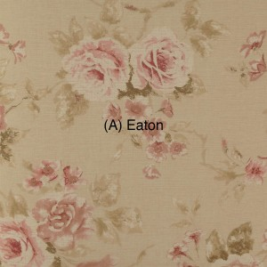 (A) Eaton 1