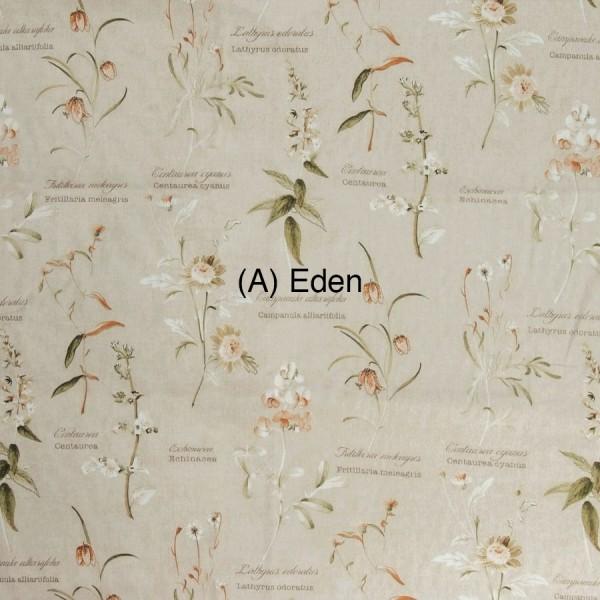 (A) Eden 1