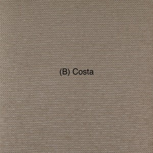 (B) Costa 1