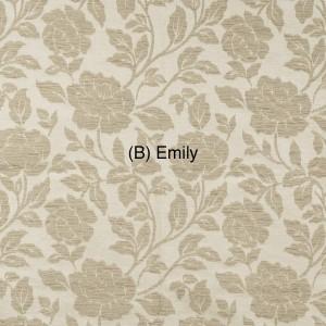 (B) Emily 1