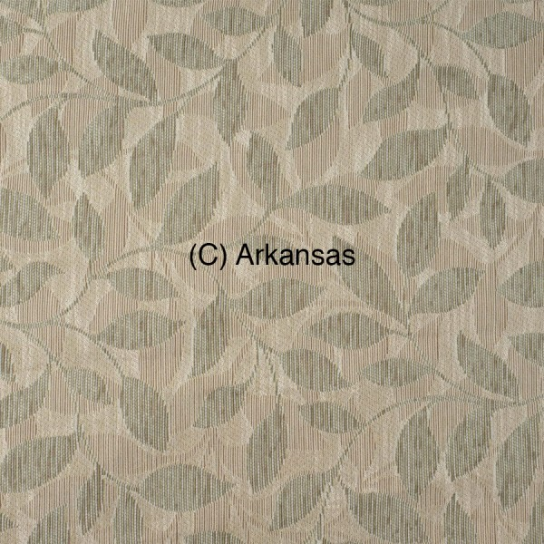 (C) Arkansas 1