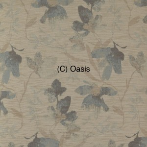 (C) Oasis 1